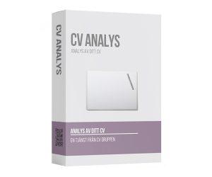 cv analys cv gruppen